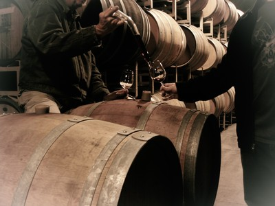 Winery and Barrel Experience