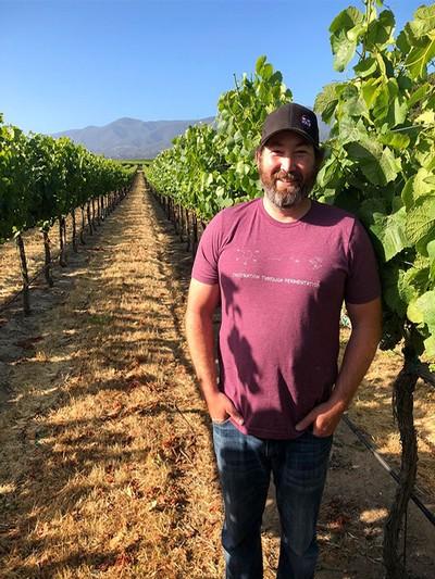 Soberanes Vineyard Experience